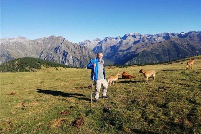 noticia ski ¿Por qué a las vacas les gusta las pistas de esquí?