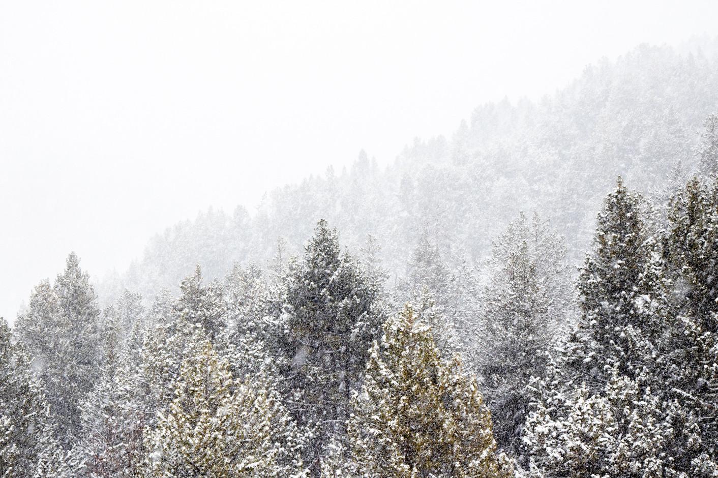 noticia ski Vuelve el invierno a Grandvalira con nuevas nevadas y un total de 180 km de pistas abiertas