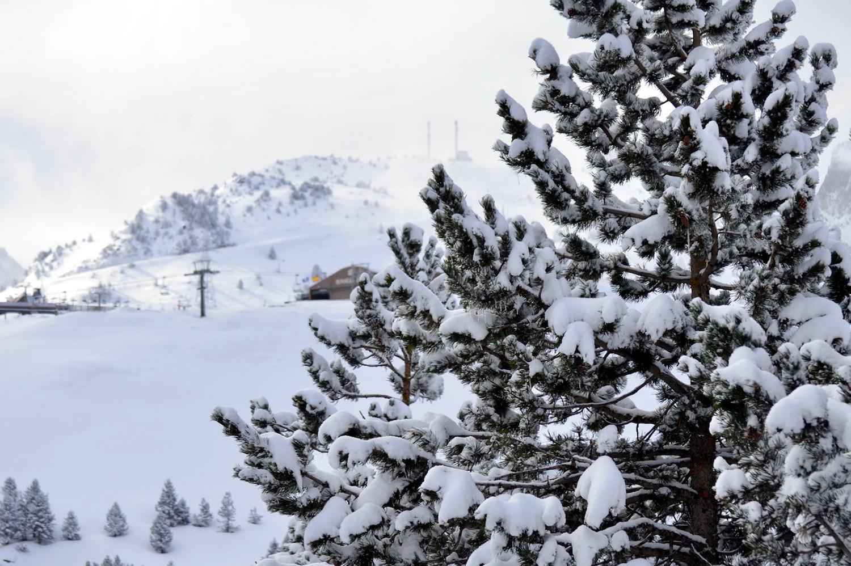 noticia ski ¡15 cm de nieve nueva en Baqueira Beret!