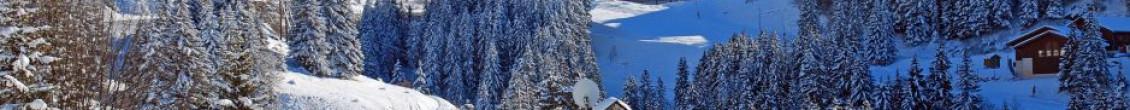 Offerte settimana bianca a Meribel-Mottaret, hotel + skipass